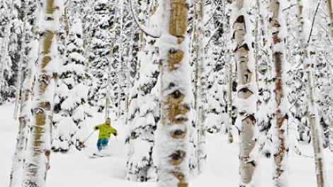 Ski Utah: Winter Sports Heaven