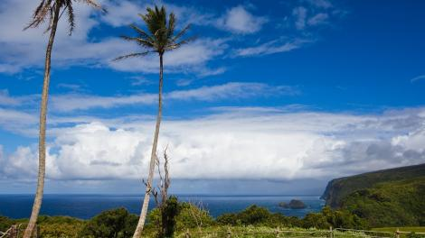 La fresca fusión de Hawaii: un seguimiento de la cocina de la isla ...