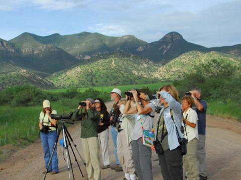 Scoping the scene during the Southeast Arizona Birding Festival in Tucson