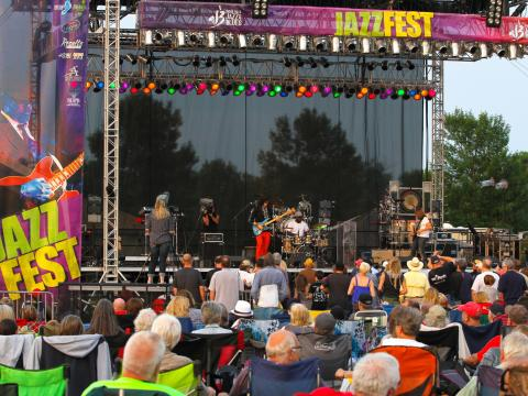 Local and nationally known musicians at the popular festival