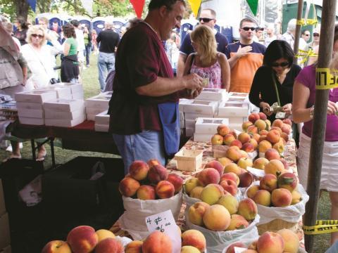 Un granjero vendiendo sus duraznos frescos en el Niagara County Peach Festival anual
