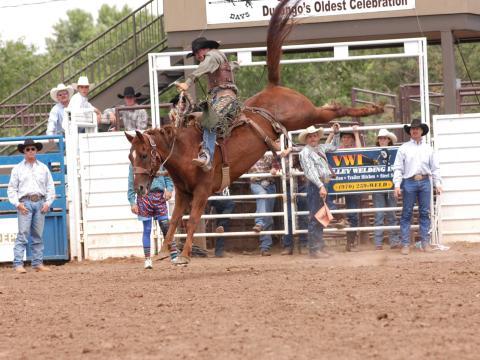 Emoción en el rodeo durante la celebración de Durango Fiesta Days